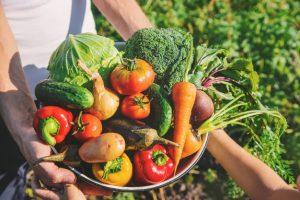 conversión ecologica agricola y ganadera